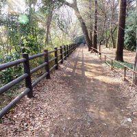日本の旅 関東地方を歩く 東京都三鷹市(みたかし)の井の頭恩賜公園(いのかしらおんしこうえん)、井の頭自然文化園(いのかしらしぜんぶんかえん)、玉川上水緑道周辺