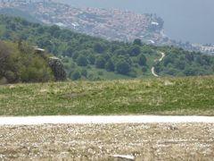 初夏の優雅な北イタリア旅行♪ Vol86(第6日目午後) ☆マルチェジーネ(Malcesine):バルド山(Monte Baldo)の美しい天国のお花畑♪
