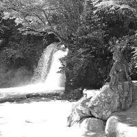 伊豆へ… 2014.06.13 =3.河津七滝(ななだる)・前編=