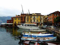 初夏の優雅な北イタリア旅行♪ Vol96(第7日目午前) ☆マルチェジーネ(Malcesine):港で船を待ちながら水鳥たちのヒナを眺める♪