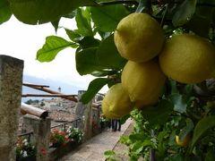 初夏の優雅な北イタリア旅行♪ Vol99(第7日目午前) ☆リモーネ・スル・ガルダ(Limone sul Garda):レモン城「Limonaia del Castel」の美しいレモン畑を鑑賞♪