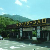 東京都中央区主催の日帰り旅行「さくらんぼ狩りと富士サファリパーク」に行ってきました�(富士サファリと東銀座「ムンバイ」での夕食)