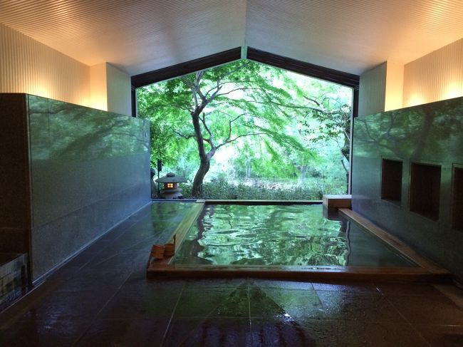 久しぶりのプチ旅行です。妻が安定期に入ってちょっと落ち着いたので近場でどこかと思い、ロマンスカーで箱根に行くことにしました。坂倉建築研究所設計の元旅館を星のリゾートが再建したという、お風呂が素敵そうな「界 箱根」に決めました。梅雨の時期だったのでお天気が心配でしたが、幸運にも晴れました。ラッキー。1泊2日のプチ旅行です。よかったら最後までご覧下さい。