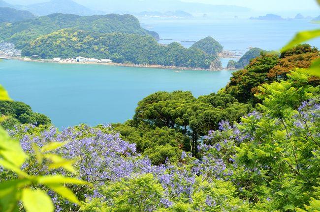 ブラジル、アルゼンチンなどの南米の街を美しく紫色に染め上げるジャカランダの群生林が南国・宮崎の日南海岸で見られるとのことで、旅に出かけることとしました。<br /><br />羽田を10:20発のJL便で宮崎に向かいます。