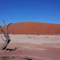ナミビアのナミブ砂漠♪