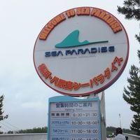 横浜・八景島シーパラダイス「あじさい祭」に行ってきました!!�(追浜・雷神社〜シーサイドライン〜八景島シーパラダイス)