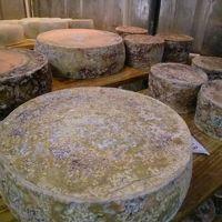 北海道 後志&むかわ町 チーズ工房を巡る旅  「ASUKAのチーズ工房」編