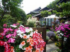 古民家に咲く花々を訪ねて 河内長野の果樹の村へ・・・(初夏編)