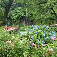 2014,06 梅雨時期でもいいね、新緑のわたらせ渓谷