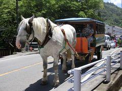 バスで行く♪ 大江戸温泉物語 栃木 ホテルニュー塩原