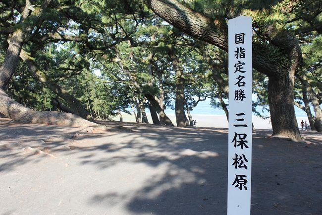当日朝、静岡市まで行くことを決めましたw<br />静岡市までは静岡市内で用事があるという人に乗せていってもらいました。行きの車の中でどこに行こうか考え、新静岡を起点に下記のように周りました。<br /><br />新静岡バスターミナル −(バス)→ 日本平ロープウェイ停留所=日本平駅 −(ロープウェイ)→ 久能山駅=久能山東照宮 −(徒歩)→ 久能山下停留所 −(バス)→ 万世町で乗換 −(バス)→ 三保松原入口停留所 −(徒歩)→ 羽衣の松 −(徒歩)→ 御穂神社 −(徒歩)→ 羽衣海岸散策 −(徒歩)→ 三保ふれあい広場停留所 −(バス)→ 新清水駅 −(静鉄電車)→ 新静岡駅<br /><br /><br />★かかった費用 約4500円<br />静鉄1日フリー乗車券 \1200<br />日本平ロープウェイ(割引券使用/片道) \500<br />久能山東照宮拝観料(社殿と博物館) \700<br />※その他、神社お賽銭ご朱印、飲食、高速料金片道分等<br />