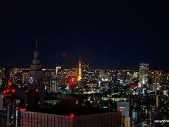 10年ぶりの東京