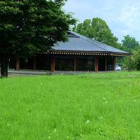 上野国分寺遺跡 (前橋市)を行く 上州の山々 山王廃寺
