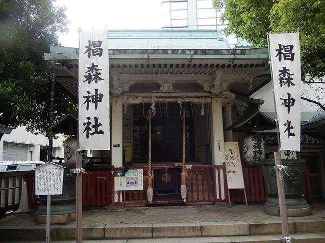 7月1日、午後4時過ぎに人形町の需要家訪問の序に近くにある椙森神社を訪問した。 椙森神社は初めてお目に掛ったが神社という名前にしてはコンクリート造りで近代風であったために過去の歴史的な由緒並びに神社の存続の歴史に興味があった。<br /><br /><br /><br />○椙森神社について・・・説明文による<br /><br />椙森神社は、社伝によれば平安時代に平将門の乱を鎮定するために、藤原秀郷が戦勝祈願をした所といわれています。室町中期には江戸城の太田道灌が雨乞い祈願のために山城国伏見稲荷の伍社の神を勧請して厚く信仰した神社で、江戸時代には、江戸城下の三森(烏森神社、柳森神社、椙森神社)の一つに数えられ、椙森稲荷と呼ばれて、江戸庶民の信仰を集め、当たりくじ富興行も行われていたといいます。<br /><br /><br />*写真はコンクリート造りの椙森神社