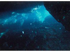 """'14  沖縄""""青の洞窟""""初めてのダイビング"""