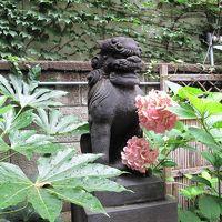 東京盛り沢山の1泊2日 日本橋七福神巡り、人形町クラス会、銀座ランチ