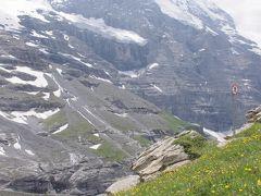 スイスアルプス 絶景と花に酔う 3日目パート2~アイガー氷河眺望ハイキング~