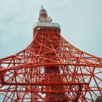 僕と奥様と東京タワー&スカイツリー