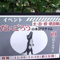 松野町虹の森公園でおさかな館探検隊になった!!