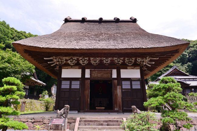 国東町浜崎のヒマワリを見ての帰り、かつて九州曹洞宗の総本山であった泉福寺へ立ち寄りました。