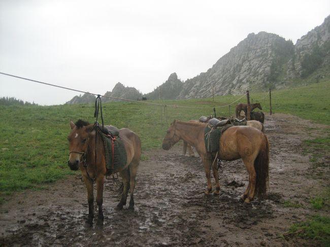 「モンゴルでは初心者でもたくさん乗馬ができる」と知ったのは去年のこと。<br /><br />旅行のベストシーズンは夏、関空からウランバートルへの直行便が出ているのは7・8月のみ、ということで1年間待ってモンゴルへ行ってきました。<br /><br />4トラのモンゴル旅行記を読みまくり、あるトラベラーさんが参加されたツアーがよさげだったので同じ旅行会社のツアーに参加。<br />といっても、他の参加者はおらず、ガイド&運転手をつけて個人旅行しているようでとっても気楽に楽しめました♪<br /><br /><日程><br /><br />1日目 13:00 関空 (OM506) 16:40 ウランバートル<br />                    (ウランバートル泊)<br />2日目 ウランバートル → テレルジ   (テレルジ泊)<br />3日目 テレルジで乗馬          (テレルジ泊)<br />4日目 チンギス・ハーンテーマパーク<br />     ウランバートル観光        (ウランバートル泊)<br />5日目 7:00 ウランバートル (OM505) 12:00 関空<br /><br />*******************************<br /><br />この旅行記は旅行2日目、雨でどうしようもなかったテレルジ編です。