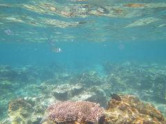 2回目のペルヘンティア島は楽しめました