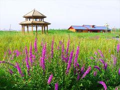新疆キルギス・カザフ旅14▼張掖ぐるぐる散歩