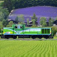 夏の北海道を巡る旅 〜富良野・ファーム富田の見渡す限りのラベンダーの絨毯を見に訪れてみた〜