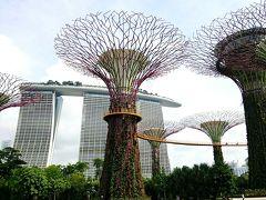 2014夏シンガポール⑤昼のマーライオンとガーデンズバイザベイ