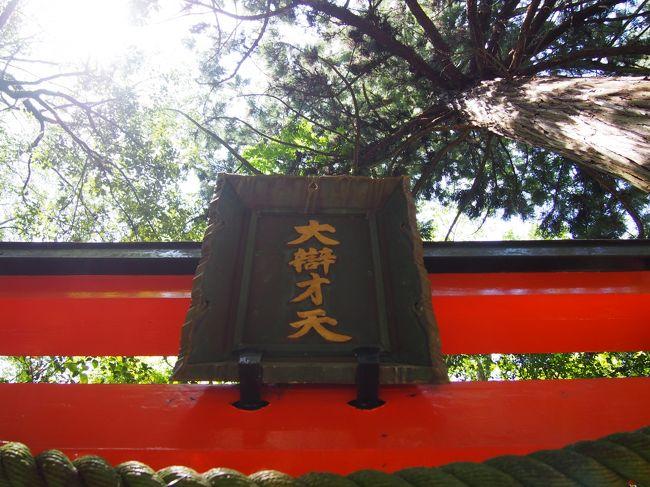 久しぶりに奈良へ行こうと考えました。<br /><br />奈良の霊山寺(りょうせんじ)、最近テレビで放映されたことを思い出しました。<br /><br />奈良市の郊外、富雄川沿いにあり、その本堂が国宝の霊山寺、まだ奥之院には行ったことがありません。<br /><br />奥之院、歩けるようであれば行ってみようと思います。<br /><br />【写真は、奥之院の鳥居と御神木です。】