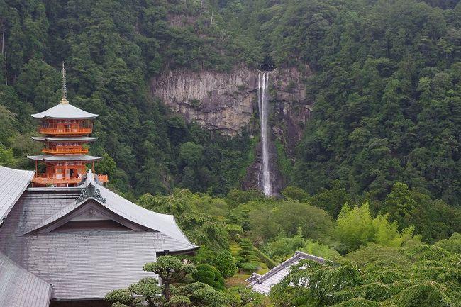 南紀・熊野古道フリーきっぷ(中辺路コース)を利用して、熊野三山を巡ってきました。<br />交通手段は、車か鉄道か迷いましたが、今回は一人旅ということもあり、のんびり鉄道旅にしました。自宅の静岡から紀伊勝浦まで、通常のJRで往復すると24,140円(指定席)となりますが、フリーきっぷを使えば名古屋から紀伊勝浦までは9,780円となり、静岡から名古屋までは金券屋で10,700円(自由席)となります。よって、静岡から名古屋までの新幹線とフリーきっぷを合わせ、20,480円となり、通常で買うよりも3,660円割安となります。さらに、「南紀・熊野古道フリーきっぷ(中辺路コース)」の利点は、熊野三山を結ぶ、勝浦〜那智山、新宮〜本宮大社等の路線バスも乗り放題ということで、たいへんお得です。三山を自費で回ろうとすると、三千円強はします。<br /><br />旅行日程<br />(1日目)<br />静岡 −(新幹線ひかり)→ 名古屋 −(南紀1号)→ 紀伊勝浦 −(路線バス)→ 那智山[那智大社、青岸渡寺、那智大滝、大門坂]大門坂駐車場前 −(路線バス)→ 勝浦 −(路線バス)→ 新宮(泊)<br />(2日目)<br />新宮 −(路線バス)→ 本宮大社前[本宮大社、大斎原] −(路線バス)→ 権現前[速玉大社、神倉神社]−<br />新宮 −(南紀8号)→ 名古屋 − (新幹線こだま)→ 静岡<br /><br />今回の旅行では、帰りの南紀8号に乗車中、四日市付近にて運行トラブルがあり、ひょっとしたら最終の新幹線に間に合わないかも!というトラブルに会いましたが、何とかギリギリの最終新幹線に間に合いました。(名古屋20:48着予定が22:05頃着となってしまいました)