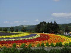 幼児連れ家族必見! 満開のお花畑と北海道スイーツ
