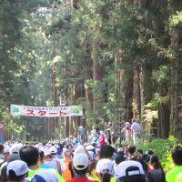 東武動物公園を経由して第9回日光杉並木マラソンに参加してきました。