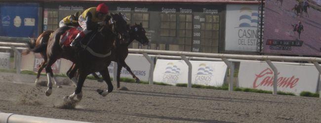 2014 モンテビデオ郊外のマローニャス競馬...