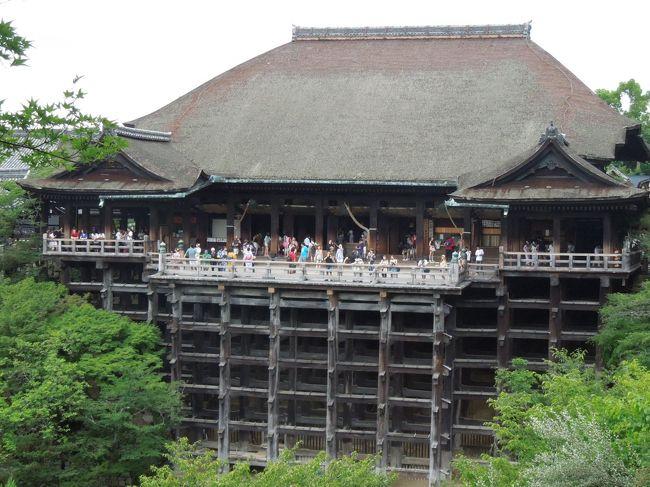 『夏の京都っておもしろい! 食べて 歩いて ときどき寺社 ...
