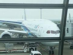 東京出張帰りにボーイング最新鋭787-9のANA国内線初号機に搭乗