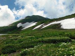 毎年恒例の家族登山-白馬乗鞍、白馬大池、栂池自然園-