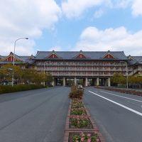2014 今年最初の遠征は神戸へ【その2】天理の町を散策