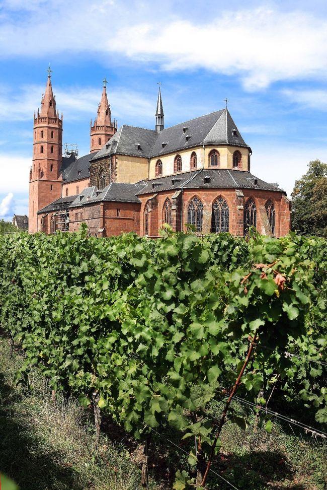 ドイツ・メルヘン街道、ミュンスターラントの水城と、オランダ、ベルギー・ルクセンブルクのアルデンヌ地方の古城を巡る旅<br /><br />期間:2013年10月14日(月)〜10月28日(月)15日間:10月17日(木)<br /><br />Rheinhessenラインヘッセンワインの産地であり、リープフラウエンミルヒLiebfraumilchが知られている。<br />ヴォルムスは大量に世界に輸出されている「リープフラウミルヒ」を最初に造った聖母教会(Liebfrauenkirche リープフラウエンキルヒェ)の地であるだけでなく、数多い醸造所を擁するラインヘッセン最大のワインの町である。 <br /><br />写真は聖母教会(Liebfrauenkirche リープフラウエンキルヒェ)
