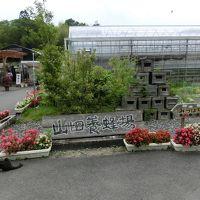 山田養蜂場へ行ってきました。