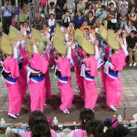 2014 日本の夏・徳島阿波踊り 二日目(&祖谷渓)