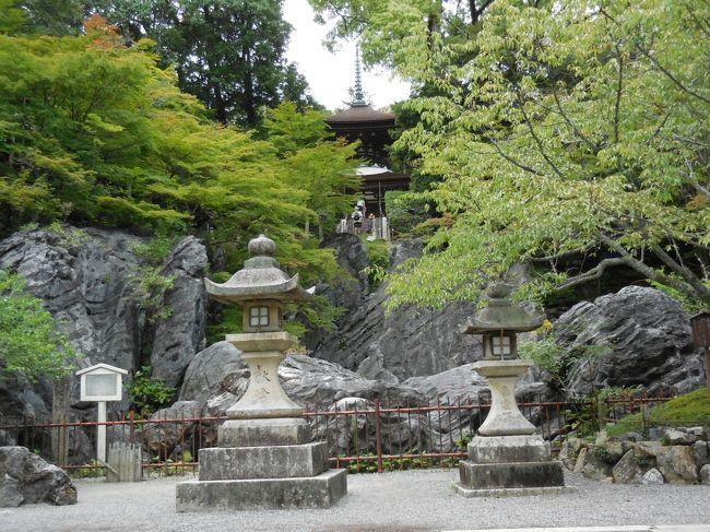 琵琶湖南から京都清水寺周辺を散策の旅。初日の比叡山・石山寺コースです!石山寺と瀬田の唐橋。石山寺散策中、スコールにあうも、神木の匂いがと傘にあたる雨音が、体にしみ込んでよかったです。瀬田の唐橋まで歩きつくと、空も晴れて、鮮やかな黄色の姿がよかったです。