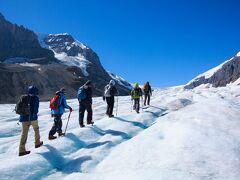 「青春をつないで50年」のカナダ遠征3 コロンビア大氷河でアイスウォーク