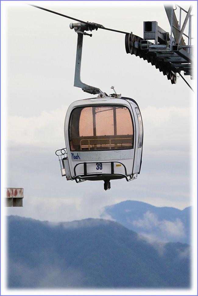 ■夏の車旅、岡山〜福井〜能登半島〜北アルプス〜京都<br /><br /> 恒例となった夏の長距離車旅、全走行距離は2030kmでした。5泊6日のひとり旅日記、第8編です。表紙の写真は白馬岩岳のゴンドラです。<br /><br />≪夏の車旅、旅行3日目≫<br />▼井波町八日市通りの町並み/富山県南砺市井波<br />▼夢の平/富山県砺波市五谷<br />▼北陸自動車道「入善PA」/富山県下新川郡入善町<br />▼フォッサマグナパーク/新潟県糸魚川市根小屋<br />▼白馬岩岳ゆり園/長野県北安曇郡白馬村<br />▼大王わさび農場/長野県安曇野市穂高<br />▼松本市内H泊<br /> 旅行4日目へつづく・・・<br /><br />▼白馬岩岳ゆり園&マウンテンビュー  HPより<br /> ゴンドラで標高1289mの山頂へ、降りた瞬間一面に広がる赤・黄・橙・白色の色鮮やかなすかしゆりの花畑と、白馬の街並みや東の山並を見渡す大パノラマを望める!<br /> 木肌の美しいブナ林には、エレガントで香り高いハイブリッドゆりが咲き誇り、ほのかに甘い香りと鳥のさえずりが聞こえる木陰で、ハンモックに乗り涼しい風に揺られながら安らぎのひとときを。<br /> ブナ林から一歩入ると、ブナやミズナラ、伝統樹木のネズコなど緑豊かな森に、涼しい風が吹き抜ける自然の癒しの空間「ねずこの森」が広がる。木々の葉から差し込むやわらかな太陽の光、時折聞こえる鳥の声と風の音を聞きながら・・・。<br /><br />【手記】<br /> 夏の車旅、3日目は井波町八日市通りの町並み観光からスタートです。富山県砺波市から一路、長野県北安曇郡白馬村へ向かいました。<br /> この日は前日の強行軍で体力がエンプティー状態、完全にバテあげていたので無理ができず訪問箇所が少なくなりました。歳じゃのお〜。。。
