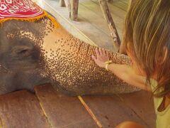 2 Singapore シンガポールからの週末エスケープ、 象さんに夢で誘われプーケット Karon Beach, Phuket