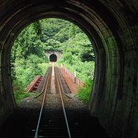 越前の山あいを走るローカル線「越美北線の旅」(福井)