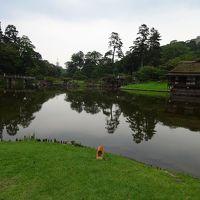 日本史上最大の変革者とその時代を追って−−(近江八幡、安土、彦根城−−)
