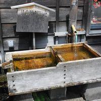 北陸の小京都 越前おおの街歩き(福井)