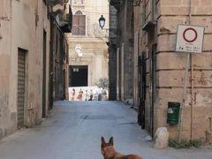 真夏の優雅な南イタリア旅行 Napoli×Puglia♪ Vol182(第10日目午後) ☆ターラント(Taranto):危険の香りがする旧市街(Citta Vecchia)をゆったりと歩く♪