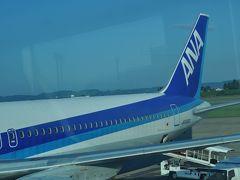 2014年9月航空機と鉄道とバスの旅1(ANA882便)